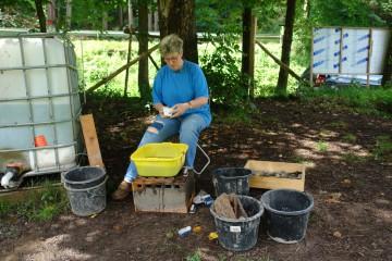 Immer mehr Fundstücke = immer mehr Arbeit für Anne.