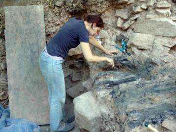 Freilegung der verkohlten Holzbalken einer eisenzeitlichen Pfostenschlitzmauer.