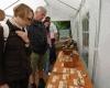 Im Laufe des Tages bekam auch die kleine Ausstellung ihre volle Aufmerksamkeit.