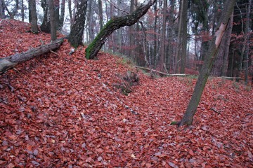 Die Spuren der leider nicht dokumentierten Untersuchungen aus dem Jahre 1989 zeichneten sich zu Begin der Ausgrabungen 2007 noch deutlich im Gelände ab.
