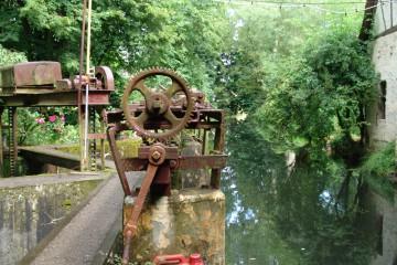 Wie an vielen Stellen im Spessart wird auch hier der Bach für das Betreiben eines Wasserrades aufgestaut. Im Zeitalter der Elektromotoren haben wir fast vergessen, welche Rolle die Wasserkraft für die vorindustrielle Gesellschaft spielte. Regionen wie der Spessart mit ganzjährig wasserführenden Bächen mit vergleichsweise großem Gefälle erhalten dadurch eine große Bedeutung, bilden das Rückgrat einer frühindustriellen, reichen Region. Wie an einer Perlenkette reihte sich in den Tälern des Spessarts Mühle an Mühle - und das keineswegs nur zur Mehlherstellung. Man stampfte Filz, sägte Bretter, schmiedete Eisen, erzeugte Strom und - wie in vorliegendem Fall - zerstampfte Senfkörner. Der in dieser Mühle bis um 1960 gefertigte Senf konnte in allen Speisewagen der Deutschen Bahn genossen werden.