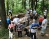 Der Besucherandrang war groß. Foto: Volker Keller, Wirtheim