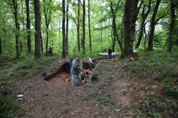 In der zweiten Woche sind im Wallschnitt schon die ersten Strukturen erkennbar.