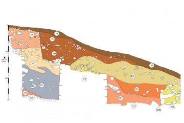 Die in Schnitt 2 gefundene Pfeilspitze war eingebettet in eine graue, sandige Schicht (Befund 215).