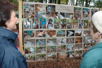 """Rechtzeitig zum """"Tag der offenen Burg"""" konnten Besucher anhand der großen Fototafel interessante Einblicke gewinnen."""
