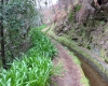Das Gebirge Madeiras ist von einem ausgeklügelten Kanalsystem durchzogen, den Levadas. Sie leiten den im Gebierge niedergehenden Regen in die tieferen, landwirtschaftlich genutzten Areale ab.