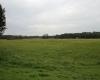 Heute ist dieses Areal südlich von Brünn (CZ) Naturschutzgebiet. In der Zeit des Großmährischen Reiches im Frühmittelalter war das Feld vollständig von einer Siedlung überbaut.
