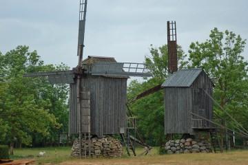 Historischer Windpark auf der Insel Saaremaa (EST)
