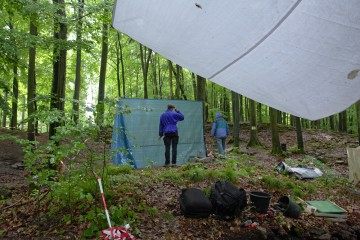 Regen, nichts als Regen... Planen über den Schnitten ermöglichen es uns, trotzdem mit unseren Untersuchungen fortzufahren.