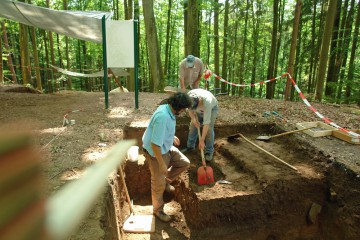 In Schnitt 8 tritt eine sehr große Grube zu Tage. Sie enthält eine Vielzahl von Artefakten, anhand derer der Alltag auf der Burg vor annähernd achthundert Jahren rekonstruiert werden kann.