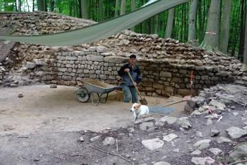 Reißaus nimmt der kleine Hund, ehe auch er beim Graben an der Mauer helfen muss.