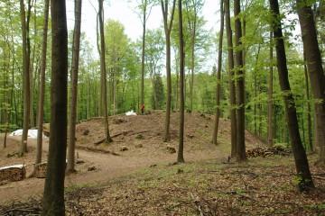 Nach Fällung eines Großteils der Bäume ist die Oberburg seit Frühjahr 2009 schon von Weitem erkennbar.