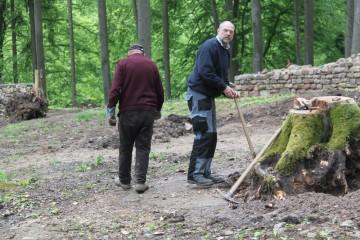 Nun gilt es, die letzten Baumstümpfe auf dem Burgplateau zu beseitigen.