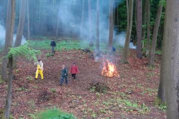 Das Vorburgareal wird vom Unterholz befreit.