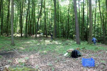 Einrichtung eines Messsystems in der Vorburg: Das Bodenradar wirft seine Schatten voraus.