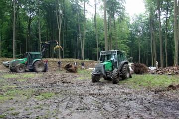 Für das entfernen der großen Wurzelstöcke rückt nochmals der Traktor an.