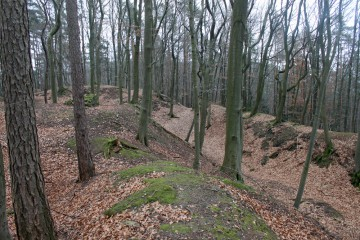 Blick vom Burginneren auf den Graben mit vorgelagertem Wall im Norden und Westen des Klosterbergs