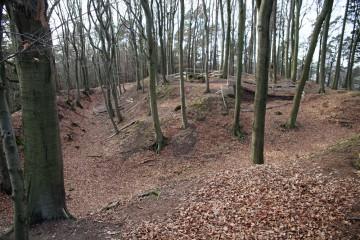 Die Geländesituation auf dem Klosterberg während der Grabungen 2013