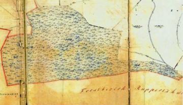 Auf der kartographischen Uraufnahme von 1845 wurden die Ruinenreste nicht erfasst, obwohl sie bis 1903 noch vorhanden waren (Plangrundlage: Urkartaster, Bayerische Vermessungsverwaltung).