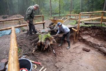Und wieder steht ein Baumstumpf den Grabungsarbeiten im Weg.