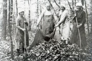 """Im Frühjahr holte man """"Straasel"""" aus dem Staatswald. Das war Laub, das man zum Einstreuen im Kuhstall verwendete, da Heu für diese Zwecke kaum zur Verfügung stand. Dieses brauchte man, um es über den Winter an das Vieh zu verfüttern. Im Wald wurde das Laub zuerst auf einen Haufen, dann in große Tücher gerecht um es auf den Wagen zu tragen."""