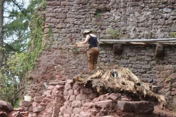 Die Zeichnung des Aufrisses der Westwand des Palas wird zum Drahtseilakt.