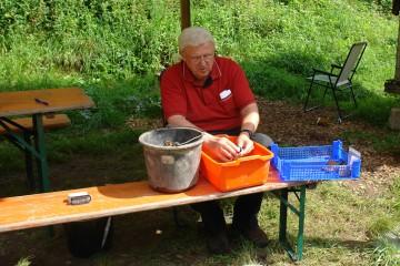 Auch der Vereinsvorsitzende legt Hand an, um die zahlreichen Scherben möglcihst bald nach ihrer Bergung zu waschen.