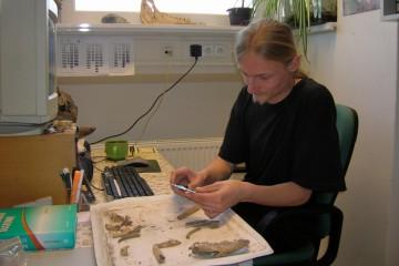 Im Labor für Paläobotanik und Paläoökologie in České Budějovice wurden die Knochen des Hundes von der Ketzelburg vermessen und untersucht.