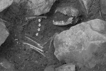 Vor dem Kopf des Hundes fand sich ein Knochen. Ging man anfangs von einer Grabbeigabe aus, so ergab die Analyse des Hundeskeletts, dass der Knochen zum linken Vorderbein des Hundes gehörte.