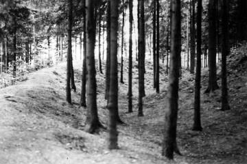 Im Graben der Ketzelburg. Fotografie um 1930 (Haibach, Privatbesitz)