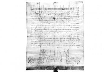 Das feierliche Privileg von Papst Lucius III. für das Stift St. Peter und Alexander garantiert den ungeschmälerten Besitz all seiner rechtmäßig erworbenen Besitzungen. Es ist als ein Instrument des Stiftes zu sehen, seine Unabhängigikeit zu wahren, auch gegenüber dem Mainzer Erzbischof. Mit seiner Unterschrift an prominenter Stelle erkennt der Mainzer Erzbischof damit die Rechte des Stifts an.