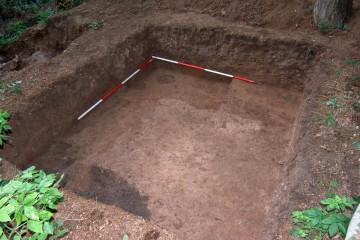 Südlich des Grubenhauses zeichnen sich weitere Pfostenlöcher und Gruben ab.