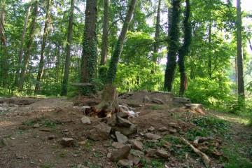 Anlässlich einer Ortsbegehung mit dem Bayerischen Landesamt für Denkmalpflege werden die für das Jahr 2005 geplanten Maßnahmen auf der Ketzelburg abgestimmt.