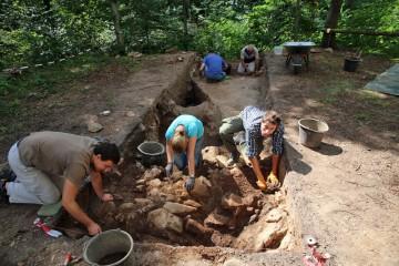 Im Nordteil des Palisadenschnittes fanden wir unmittelbar auf dem gewachsenen Felsen frühgeschichtliche Keramik.