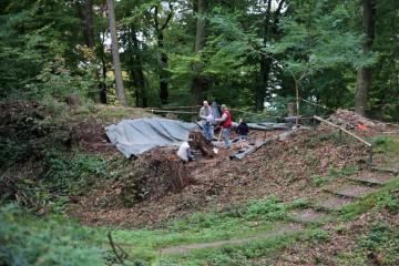 Im Vorburgschnitt wird der letzte Baumstumpf beseitigt.