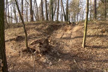 Die Aufnahme aus dem Frühjahr 2004 zeigt eine Raubgrabung an der nordöstlichen Hangkante des Burgplateaus.