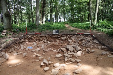 Der Steinversturz im Norden der Fläche ist als geologisch anzusprechen.