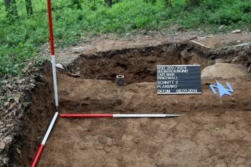 Unerwarteter Fund: ein Zeugenstein aus dem 19./20. Jahrhundert in der Wallkrone