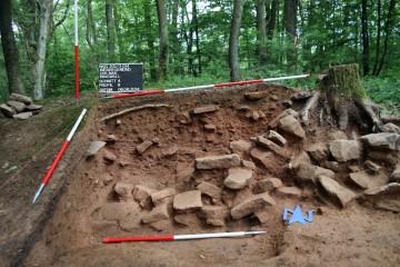 Die Steinsetzung der nördlichen Torwange ist durch einen aufsitzenden Baum sowie durch jüngere Erdeingriffe stark beeinträchtigt.