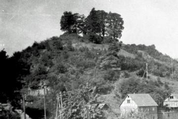 Der Burgberg um 1900 war weitgehend bewuchsfrei.