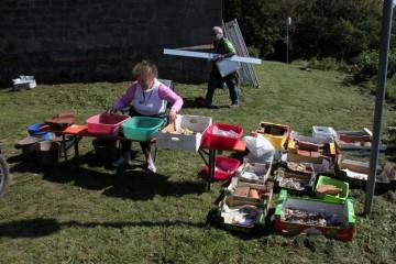 Anneli hat den Großteil aller Funde vom Gotthardsberg gewaschen.