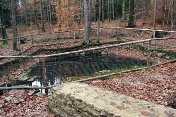Der ehemalige Fischteich der Anlage hat sich inzwischen wieder mit Wasser gefüllt.