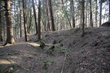 Unscheinbar und lange unentdeckt: Die Überreste einer Sternschanze bei Frammersbach