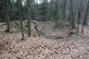 Der Kugelberg vor der Grabung
