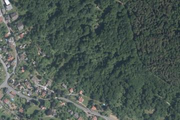 Ehemalige Weinbergsterrassen: Luftbild vom 9.6.2014 mit dem heutigen Wald; Gebietsausschnitt 400 m x 600 m. Geobasisdaten: Bayerische Vermessungsverwaltung