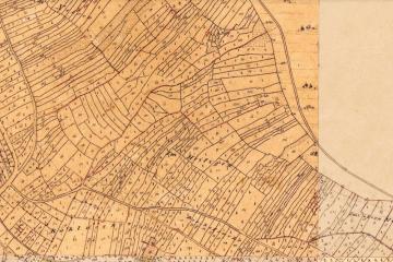 Ehemalige Weinbergsterrassen in der Historischen Flurkarte der Katasteruraufnahme (um 1850); Gebietsausschnitt 400 m x 600 m. Geobasisdaten: Bayerische Vermessungsverwaltung
