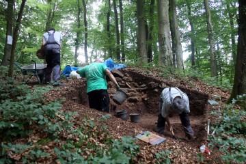Neuer Schnitt, neues Glück: auch an der Nordspitze stoßen wir auf Reste der Ringmauer.
