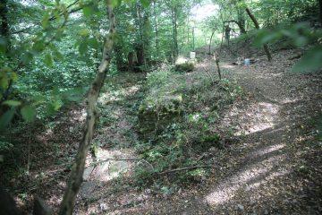 Noch sind auf dem Kugelberg lediglich die Spuren der Untersuchungen der 1940er Jahre zu sehen.