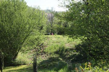 Noch ist auf dem grssbewachsenen Hügel kaum etwas von der Ausgrabung zu erahnen.