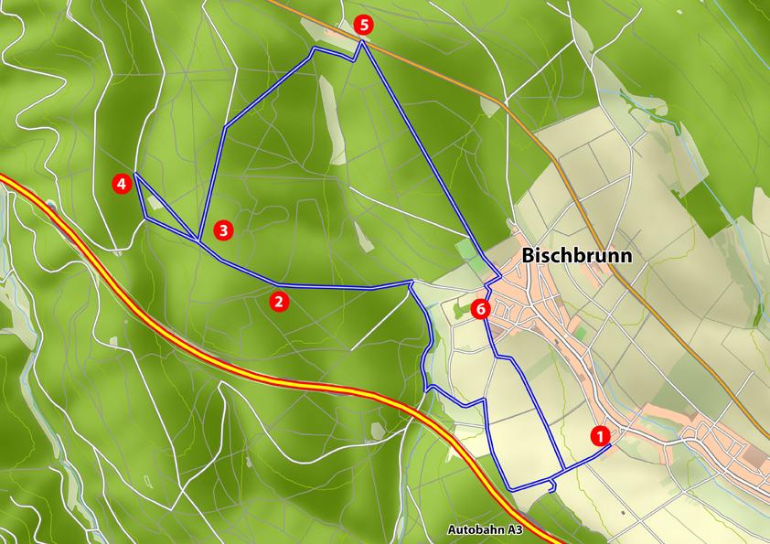 Bischbrunn: Wald und Jagd